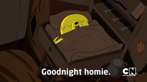 goodnighthomie